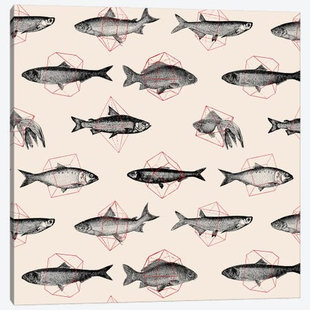 Fishes In Geometrics I Canvas Print #FLB39} by Florent Bodart Canvas Art