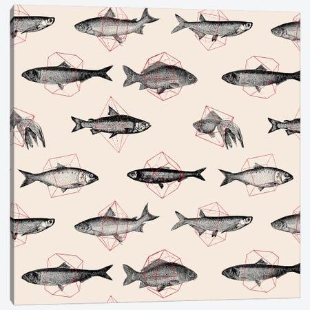 Fishes In Geometrics I Canvas Print #FLB39} by Florent Bodart Canvas Art
