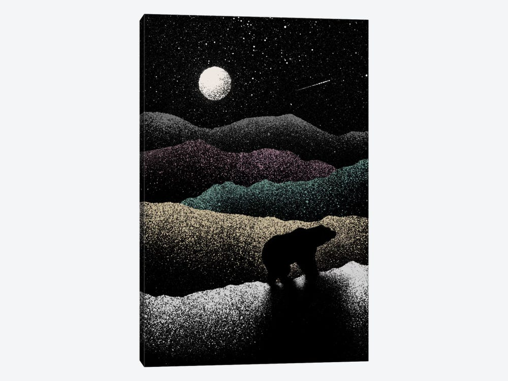 Wandering Bear by Florent Bodart 1-piece Canvas Wall Art