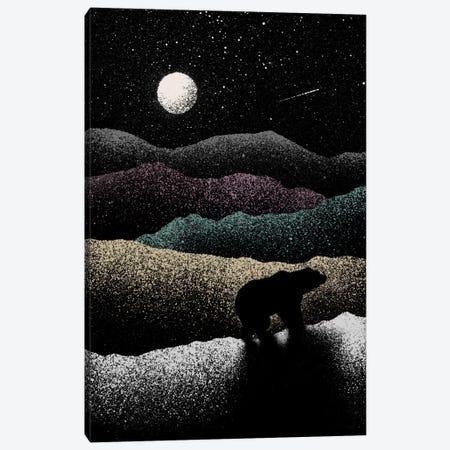 Wandering Bear Canvas Print #FLB55} by Florent Bodart Canvas Art Print