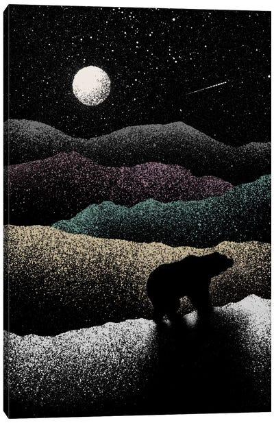 Wandering Bear Canvas Art Print