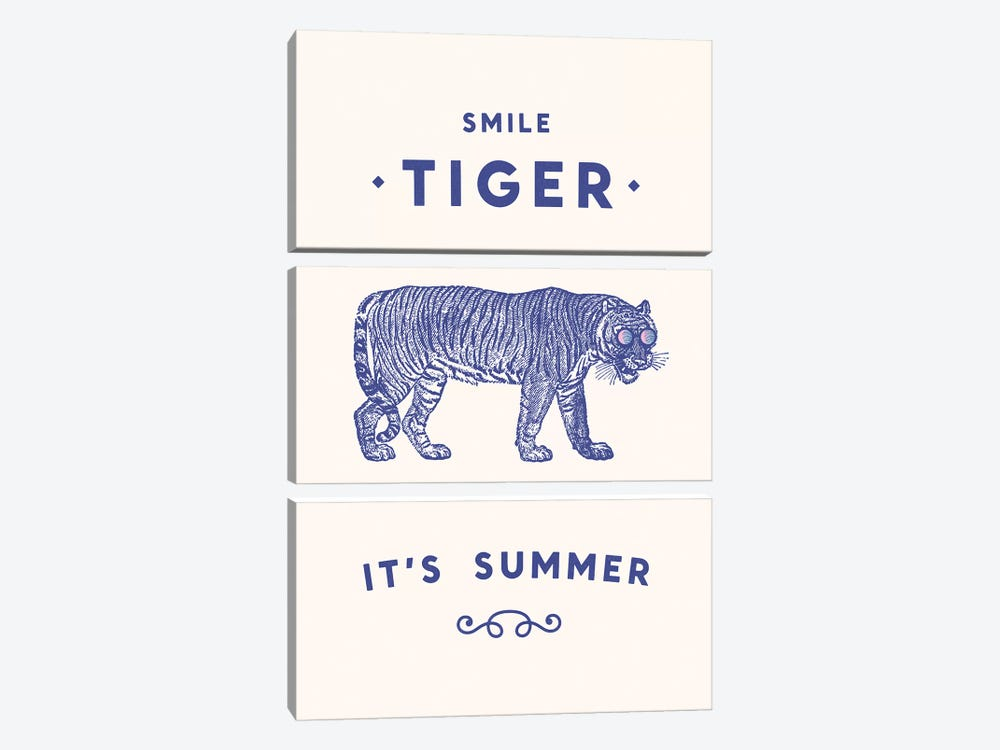 Smile Tiger, Summer Is Here by Florent Bodart 3-piece Canvas Print