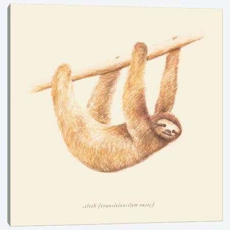 Sloth Canvas Print #FLB81} by Florent Bodart Canvas Print