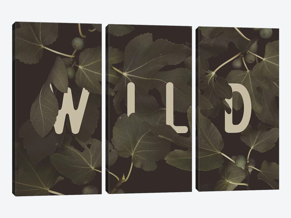 WILD by Florent Bodart 3-piece Canvas Wall Art