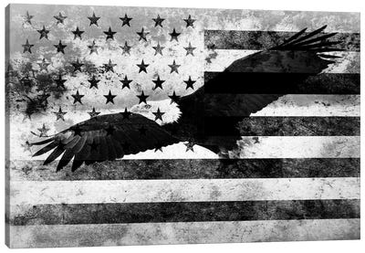 "USA ""Melting Film"" Flag in Black & White (Bald Eagle) Canvas Art Print"