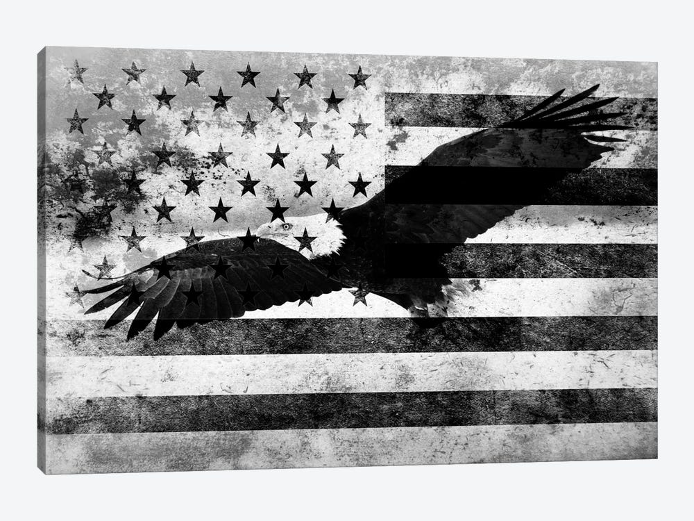 """USA """"Melting Film"""" Flag in Black & White (Bald Eagle) by iCanvas 1-piece Canvas Print"""