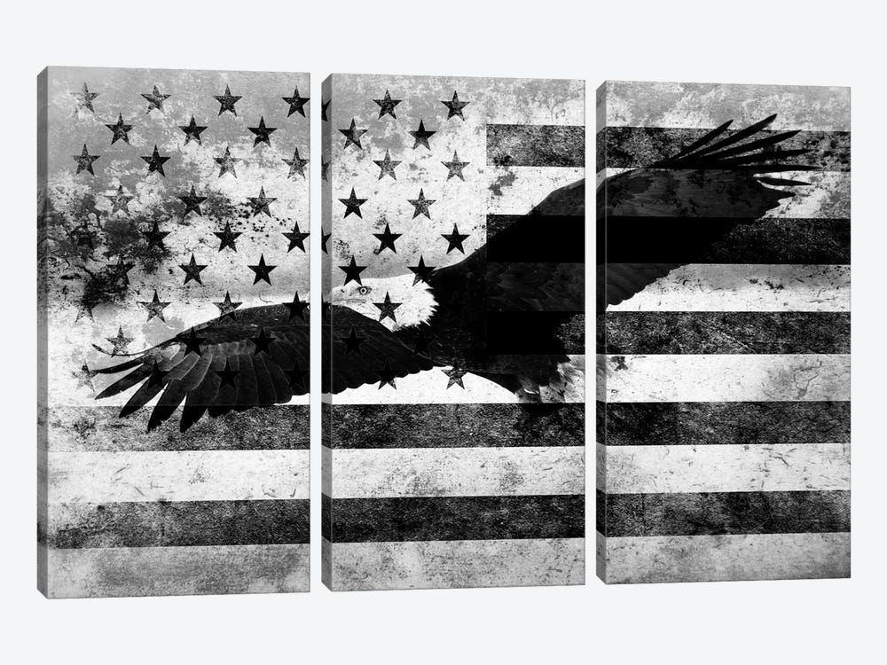 """USA """"Melting Film"""" Flag in Black & White (Bald Eagle) by iCanvas 3-piece Canvas Art Print"""