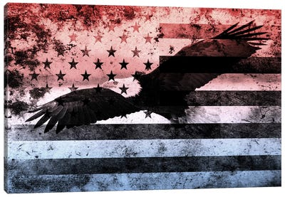 "USA ""Melting Film"" Flag (Bald Eagle) Canvas Art Print"