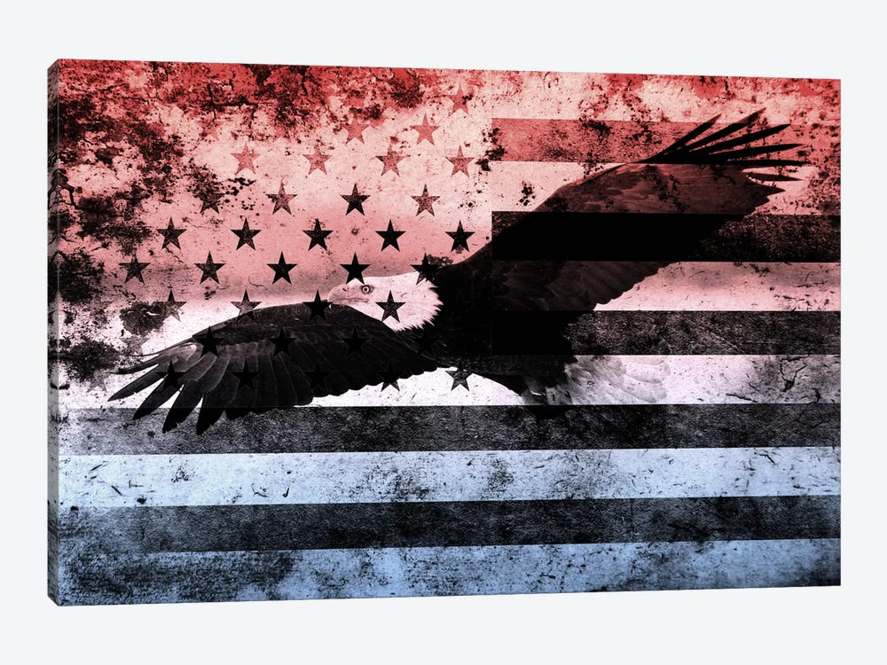 "USA ""Melting Film"" Flag (Bald Eagle) by iCanvas 1-piece Canvas Artwork"