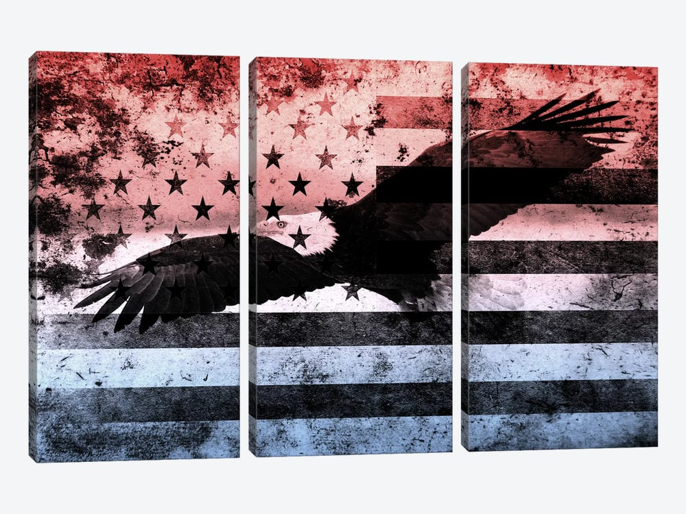 "USA ""Melting Film"" Flag (Bald Eagle) by iCanvas 3-piece Canvas Wall Art"