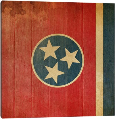 Tennessee State Flag on Wood Planks II Canvas Art Print