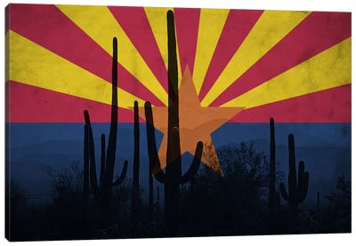 State Flag Overlay Series: Arizona (Cacti) Canvas Print #FLG543