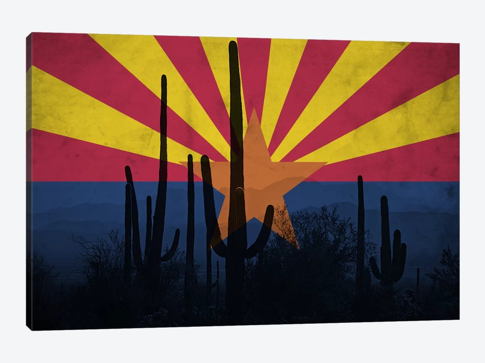 State Flag Overlay Series: Arizona (Cacti) by iCanvas 1-piece Canvas Print