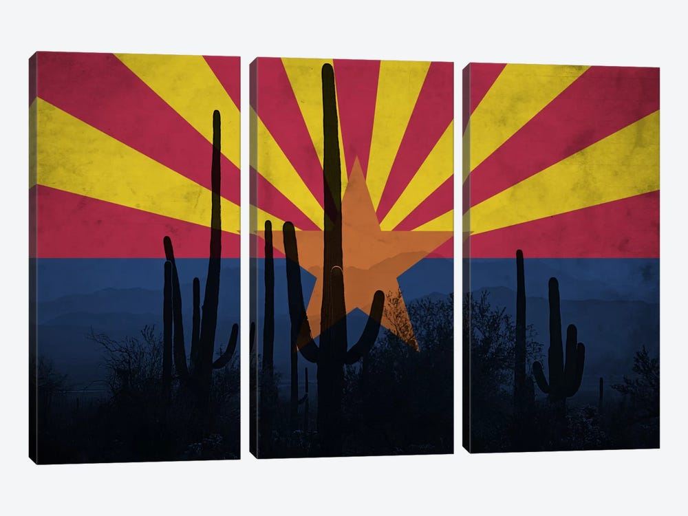 State Flag Overlay Series: Arizona (Cacti) by iCanvas 3-piece Canvas Print