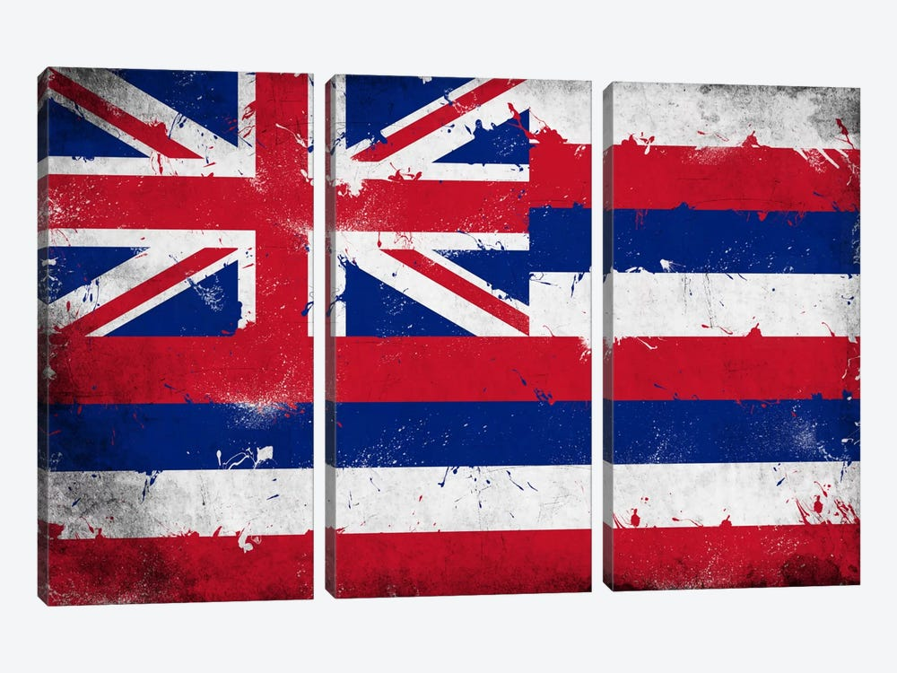 Hawaii FlagGrunge Painted 3-piece Canvas Wall Art