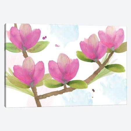 Pink Magnolia I Canvas Print #FLK52} by Flora Kouta Art Print