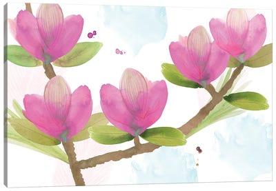 Pink Magnolia I Canvas Art Print
