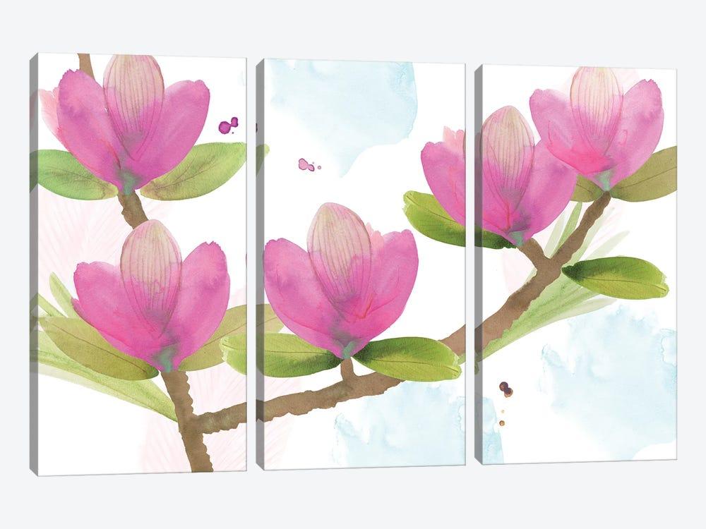 Pink Magnolia I by Flora Kouta 3-piece Canvas Print