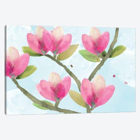 Pink Magnolia III Canvas Print #FLK53} by Flora Kouta Canvas Art Print