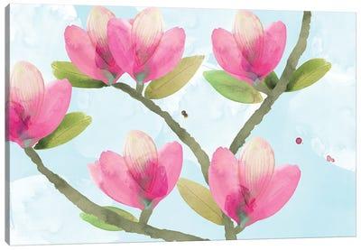 Pink Magnolia III Canvas Art Print