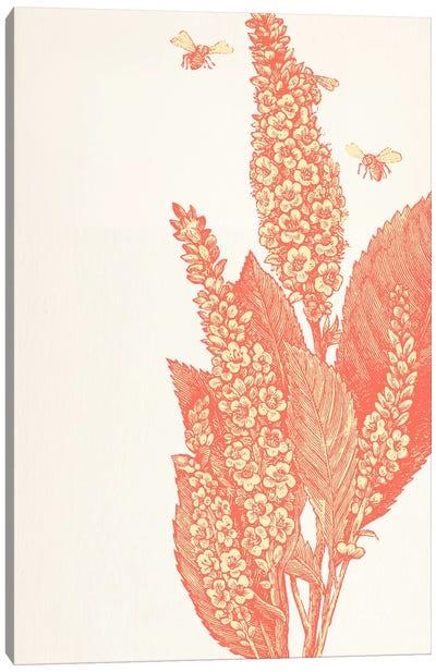 Bees & Flower Canvas Print #FLPN102