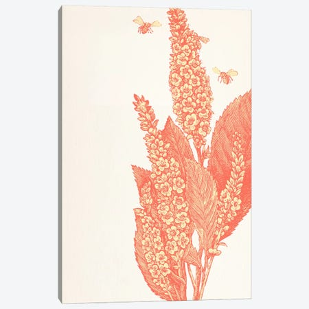 Bees & Flower Canvas Print #FLPN102} by 5by5collective Canvas Art