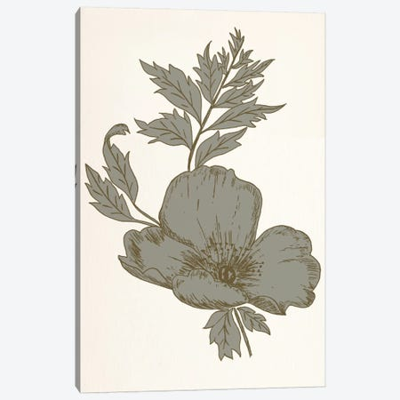 Flower (Gray) Canvas Print #FLPN114} by 5by5collective Canvas Wall Art
