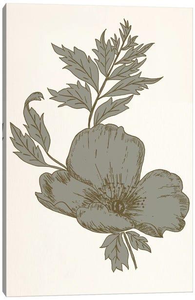 Flower (Gray) Canvas Print #FLPN114