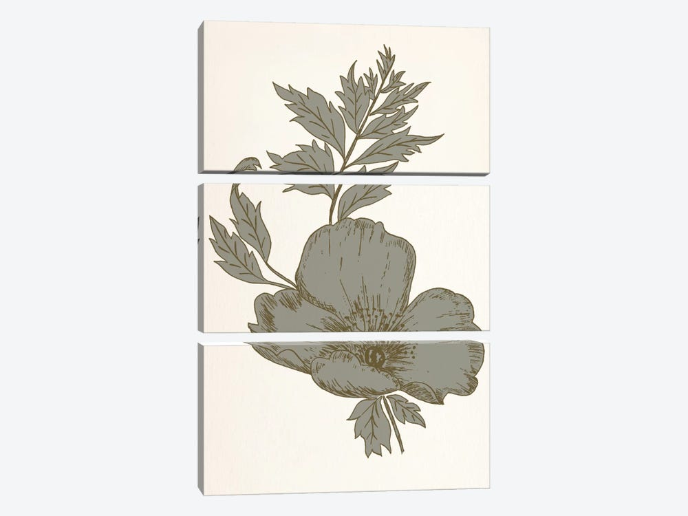 Flower (Gray) by 5by5collective 3-piece Canvas Wall Art