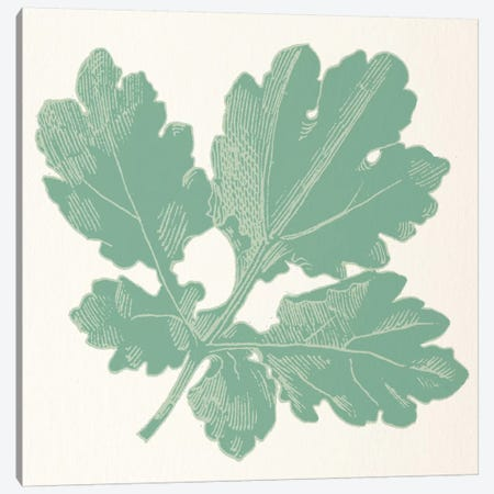 Green Leaf Canvas Print #FLPN126} by 5by5collective Canvas Art Print