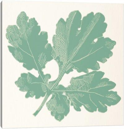 Green Leaf Canvas Print #FLPN126