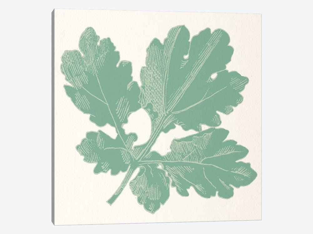 Green Leaf by 5by5collective 1-piece Art Print