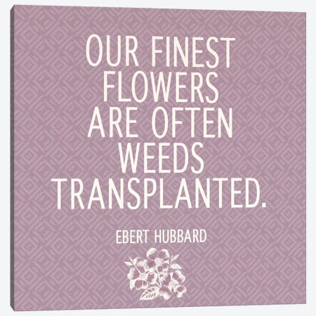 Our Finest Flowers Canvas Print #FLPN132} by 5by5collective Canvas Art Print
