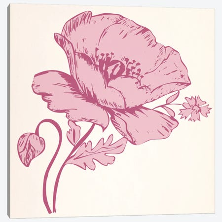 Pink Flower Canvas Print #FLPN134} by 5by5collective Canvas Art