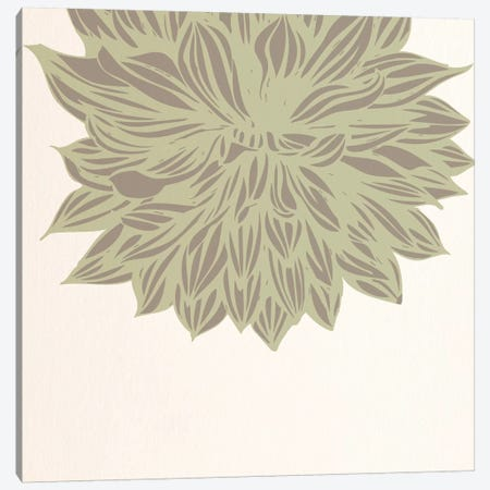 Chrysanthemum (Green) Canvas Print #FLPN138} by 5by5collective Art Print