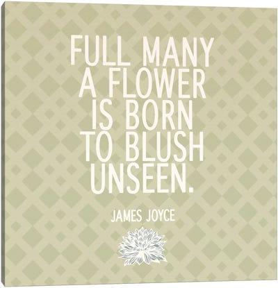 Blush Unseen Canvas Print #FLPN140