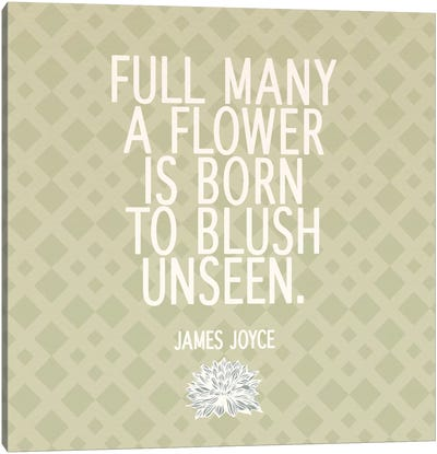 Blush Unseen Canvas Art Print
