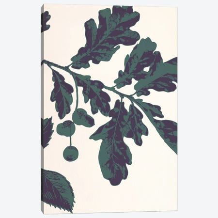 Oak Sprig Canvas Print #FLPN150} by 5by5collective Canvas Art Print