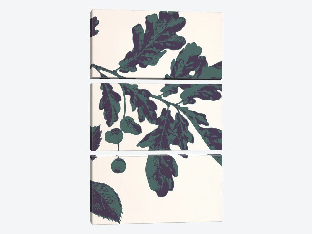 Oak Sprig by 5by5collective 3-piece Canvas Artwork
