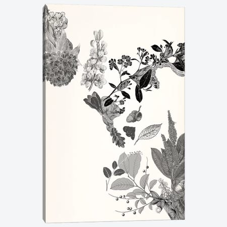 Flowers & Leaves (Black&White) Canvas Print #FLPN15} by 5by5collective Canvas Wall Art