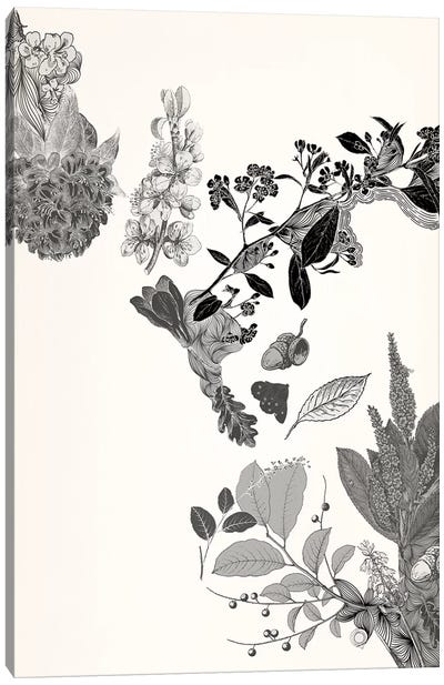 Flowers & Leaves (Black&White) Canvas Art Print