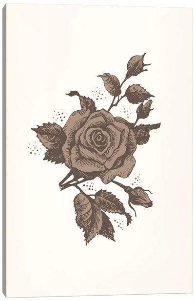 Brown Rose Canvas Art Print