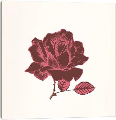 Red Rose Canvas Print #FLPN2