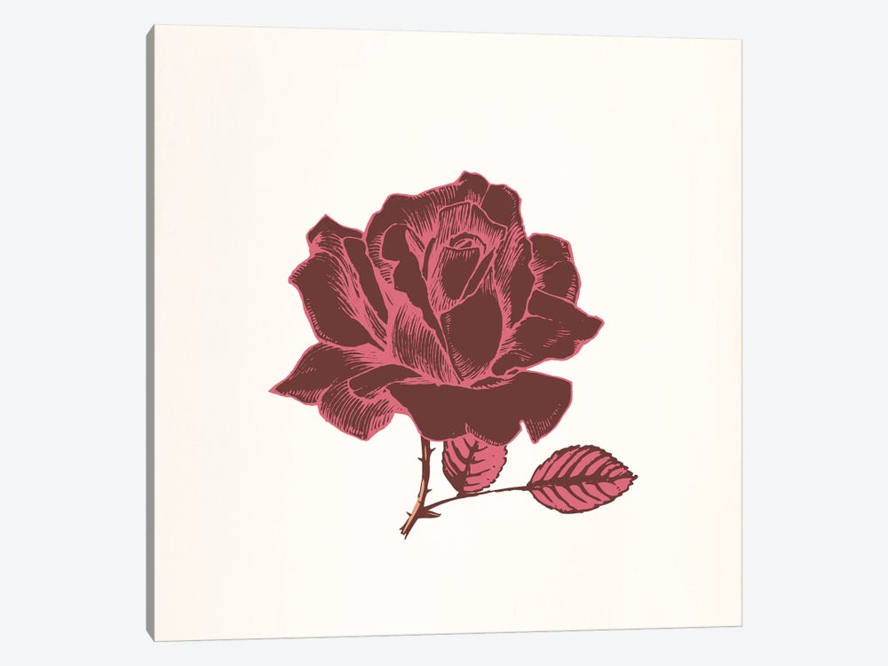 Red Rose by 5by5collective 1-piece Canvas Art
