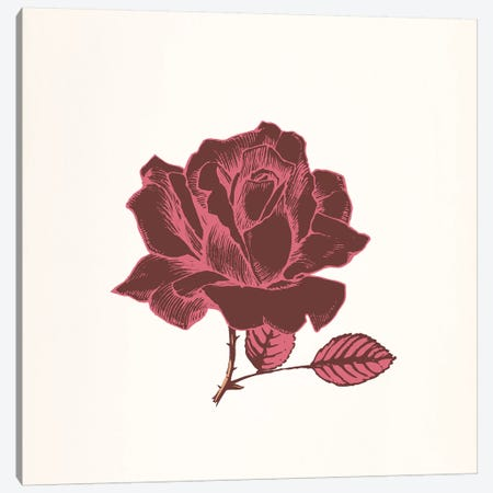 Red Rose Canvas Print #FLPN2} by 5by5collective Canvas Art Print