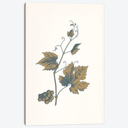 Rowan Sprig (Brown) Canvas Print #FLPN38} by 5by5collective Art Print