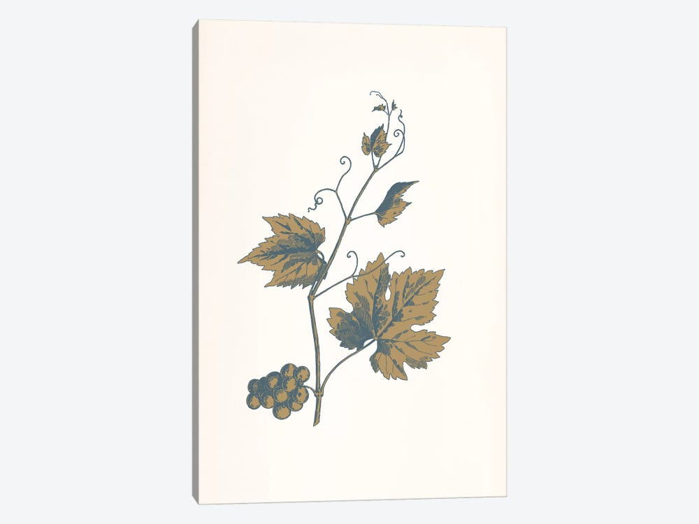 Rowan Sprig (Brown) by 5by5collective 1-piece Canvas Artwork