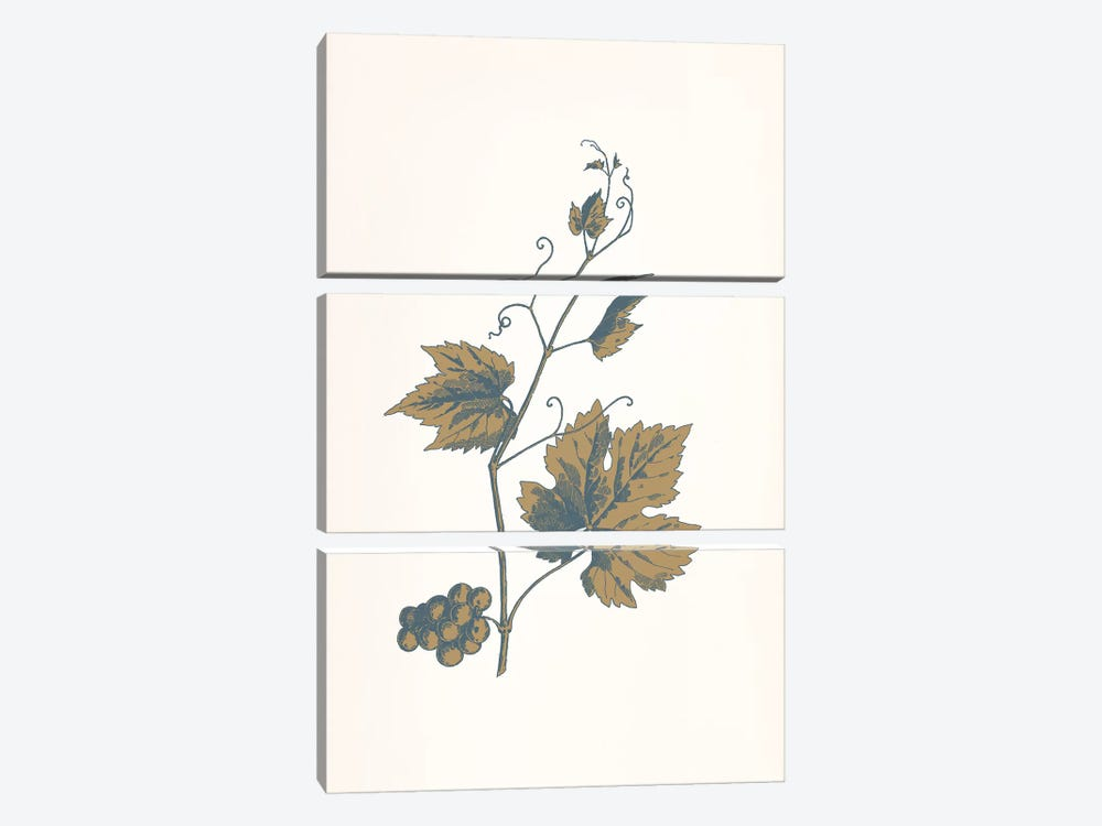 Rowan Sprig (Brown) by 5by5collective 3-piece Canvas Wall Art