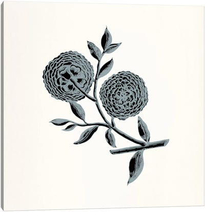Chrysanthemum (Gray) Canvas Art Print