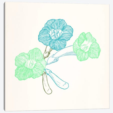 Violet (Green&Blue) Canvas Print #FLPN6} by 5by5collective Canvas Artwork
